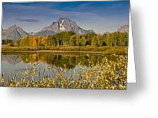 The Tetons And Fall Colors Greeting Card