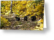 The Three Bears Greeting Card