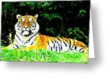 The Tiger In The Woods Greeting Card