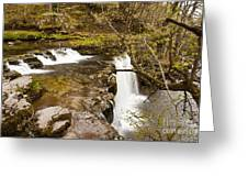 The Top Of The Falls Greeting Card