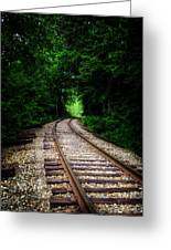The Tracks Through The Woods Greeting Card