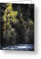 The Tree Across The River Greeting Card
