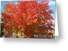 The Tree By The Church - Photograph Greeting Card