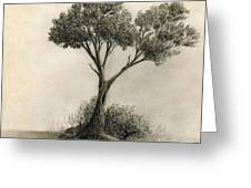 The Tree Quietly Stood Alone Greeting Card