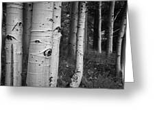The Trees Have Eyes Greeting Card