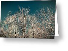 The Trees Of Teal Greeting Card