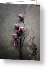 The Tulip Greeting Card