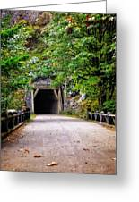 The Tunnel On The Scenic Route Greeting Card