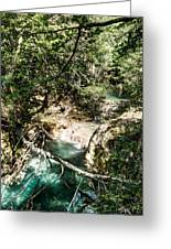 The Turquoise Waters Of The Forest River No2 Greeting Card
