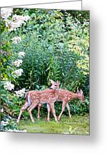 The Twins On The Move Greeting Card