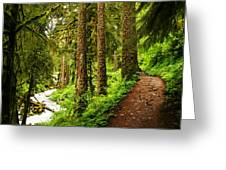 The Twisting Path Winding Through Paradise  Greeting Card