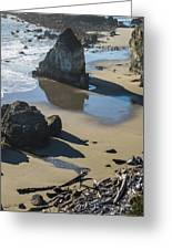 The Unexplored Beach Greeting Card