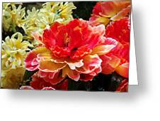 The Unfolding Greeting Card