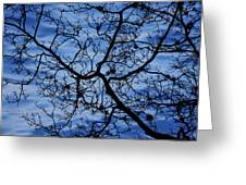 The Veins Of Time Greeting Card