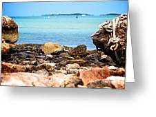 The View From Shore Greeting Card