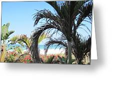 The View Of Paradise Greeting Card