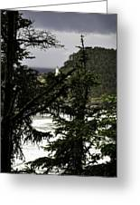 The View Of The Heceta Lighthouse Greeting Card