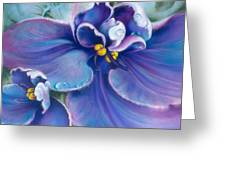 The Violet Greeting Card
