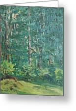The Vosges Forest Greeting Card