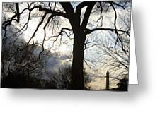 The Washington Monument Lost In The Trees Greeting Card