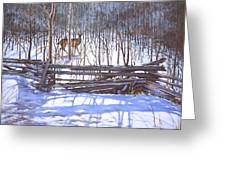 The Watcher In The Wood Greeting Card by Richard De Wolfe