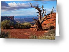 The Watchman Greeting Card