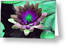 The Water Lilies Collection - Photopower 1114 Greeting Card