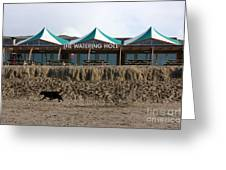 The Watering Hole Perranporth Greeting Card