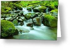 The Way Of Healing Water  Greeting Card