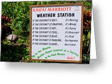 The Weather Report Greeting Card