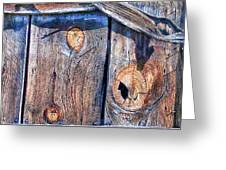 The Weathered Abstract From A Barn Door Greeting Card