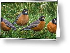 The Welcoming Committee E186 Greeting Card
