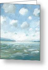 The Western Solent Part One Greeting Card by Alan Daysh