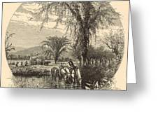 The White Mountains From The Conway Meadows 1872 Engraving Greeting Card