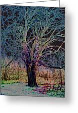10994 The Widow Tree Greeting Card