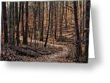 The Wilderness Greeting Card