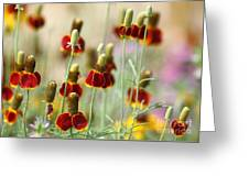 The Wildest Of Flowers Greeting Card