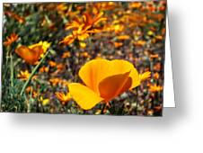 The Wildflowers Are Here And Spring Has Arrived Greeting Card