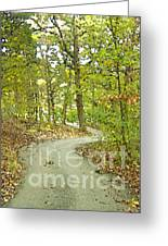 The Winding Trail Greeting Card