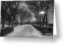 The Winter Cathedral Greeting Card