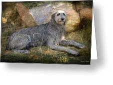 The Wolfhound  Greeting Card