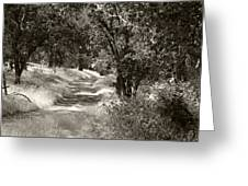 The Wooded Path Greeting Card