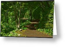 The Wooded Path... Greeting Card