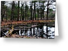 The Woods Reflected Greeting Card
