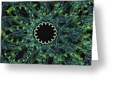 The Worm Hole Greeting Card