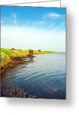 The Wwf Oasis Of Lake Burano, Capalbio Greeting Card