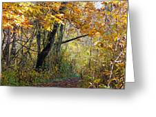 The Y Tree Greeting Card