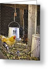 The Yellow Chicken Greeting Card