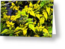 The Yellow Plant Greeting Card