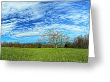 The Zen Meadow Greeting Card